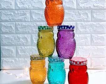Colored Glass Owl Mason Jars | Crafting | Candles | Storage
