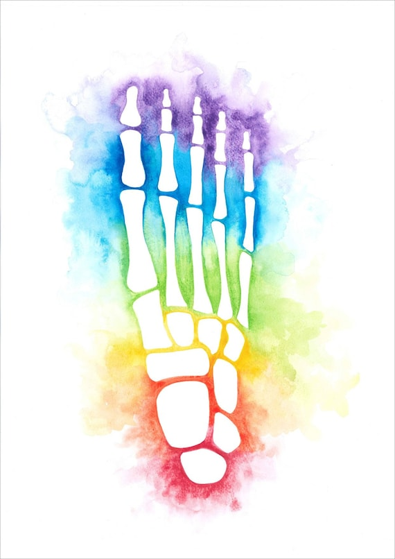 Watercolour Rainbow Foot Anatomy Bones Skeleton Print A3 A4 Etsy