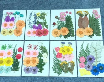 Pressing Flowers Etsy