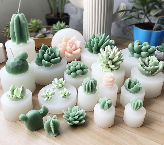 Cactus Party Succulent Mold Cactus Mold Gumpaste Mold Plaster Food Safe Silicone Silicon Mold Cake Decorating Mold DIY Resin Casting Mold