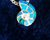 Snail shark eye pendant in aid with beautiful aqua blue fire opal.