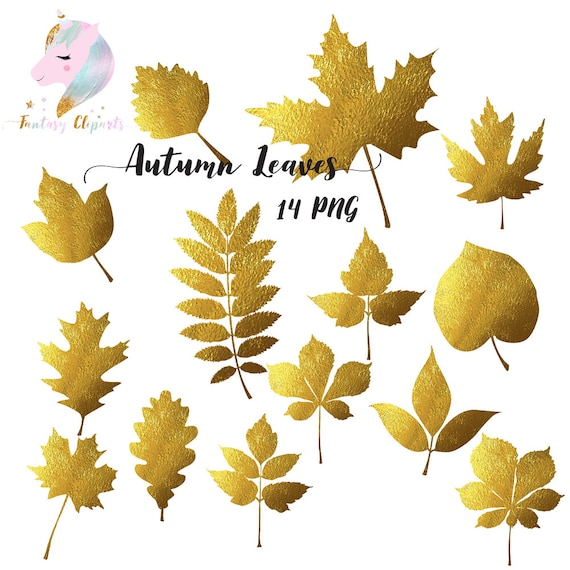 Autumn Leaves Gold Foil Clipart Golden Leaf Fall Leaves Autumn Clip Art Thanksgiving Leaf Maple Leaf Commercial Use Digital Downloa By Fantasy Cliparts Catch My Party