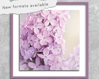 poster photography botanical lilac poster printable instant download 5 X 5 8 X 8 10 X 10 12 X 12 15 X 15 16 X 16 18 X 18 20 X 20 30 X 30 50 X 50