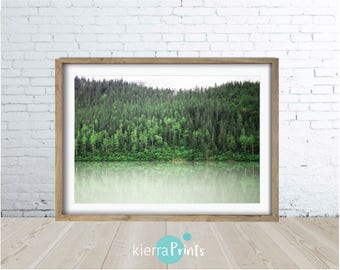 Green Forest, Landscape, Nature, Photography, Digital Download, Trending Colour, Home Decor, Large Poster, Wall Art, Living Room, Trees