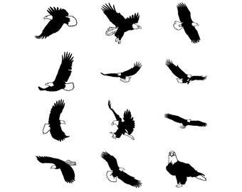 Eagle Png Etsy