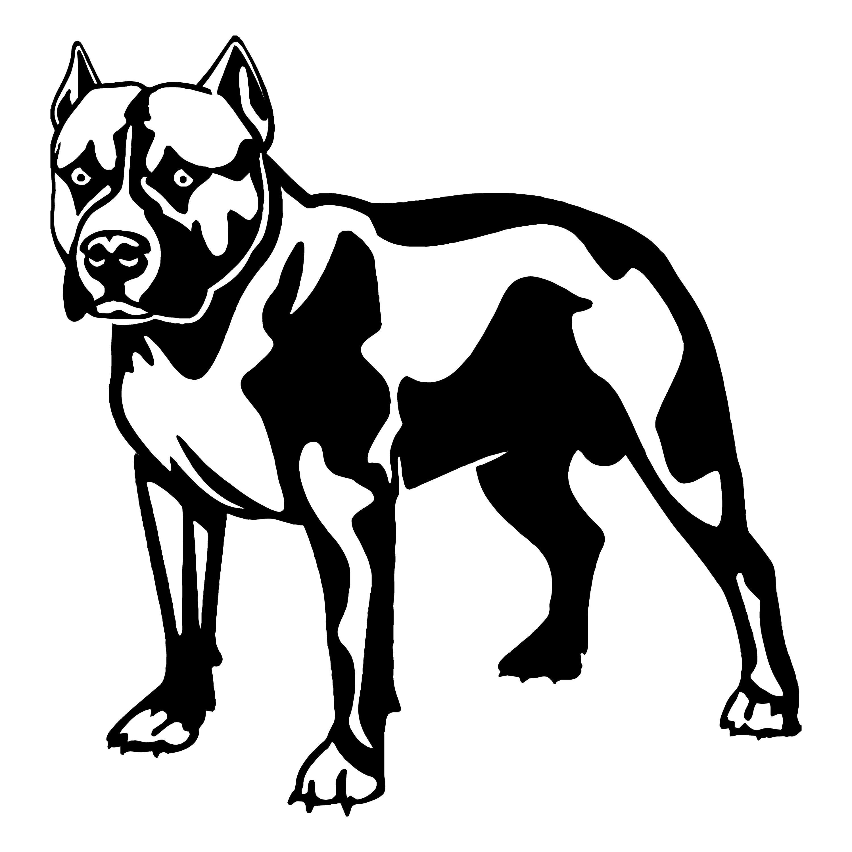 american pit bull 4 pitbull bully staffordshire terrier pit etsy Bull Terrier 50