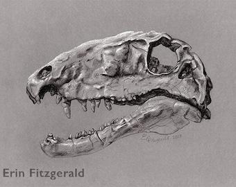 Dimetrodon large print