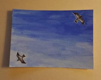 32/100 - Seagulls