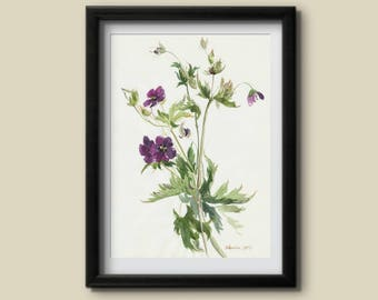 Wild Flower Art Print Watercolor Botanical Art Poster Floral Poster Watercolor Geranium Painting Wall Decor