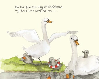 Seven swans a swimming Christmas card; Funny Christmas card; Humour; 7th day of Christmas card; Twelve days of Christmas; Illustration