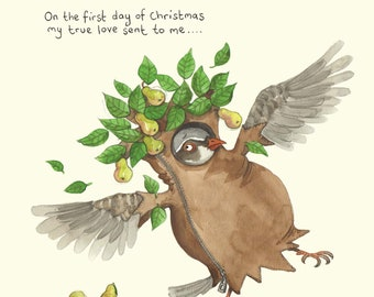 Partridge in a pear tree Christmas card; Funny Christmas card; Humour; 1st day of Christmas card; Twelve days of Christmas; Illustration