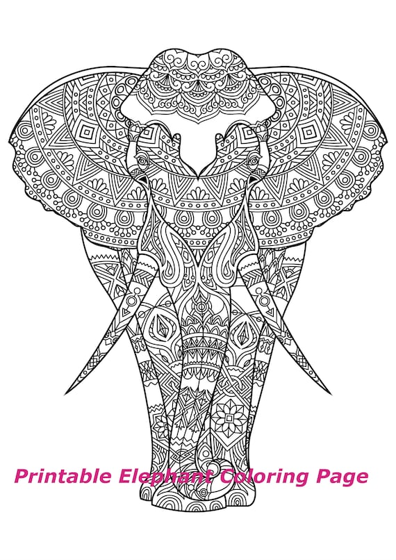 Elephant Coloring Pages for Adults - Best Coloring Pages For Kids | 806x570