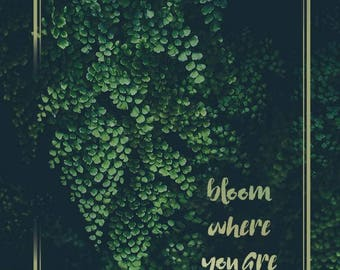Bloom where you're planted greeting card, softest paper ever!