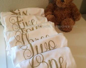 Monthly Baby Onesies (months 1 through 6) Baby Boy or Baby Girl
