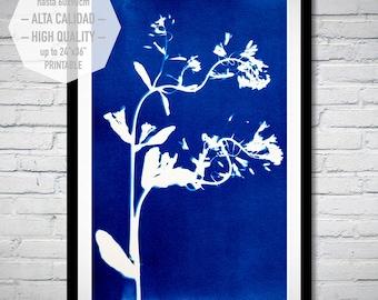 Cianotipia Azul, Arte para imprimir, estampada a mano con plantas, estilo minimalista para decorar su hogar u oficina. Interiorismo