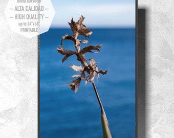 Arte fotográfico del Mar Mediterráneo para imprimir. Estilo minimalista para decorar su hogar u oficina. Interiorismo. Moderno