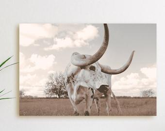 Texas Longhorn Decor | Etsy