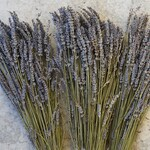 Dried French Lavender Bundles Organic | Weddings, Events, Home Office Decor, Aromatherapy, DIY, Flower Arrangements, Purple Flowers