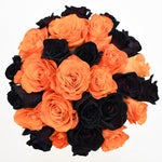 Fresh Rainbow Roses: Orange & Black Tinted Bulk Roses - Halloween/Fall/Autumn  (Free Shipping)