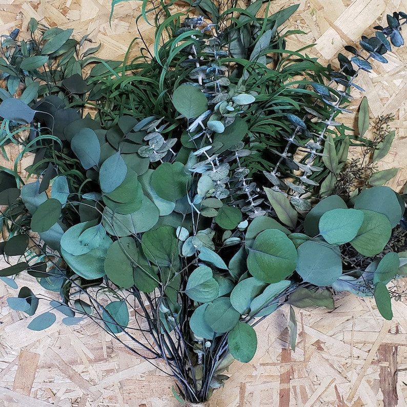 PRESERVED EUCALYPTUS BUNCH 20-30 stems Assorted Mix   Silver image 0
