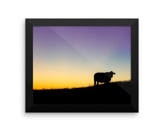 Framed photo paper poster Cow Sunset Silhouette