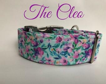 The Cleo