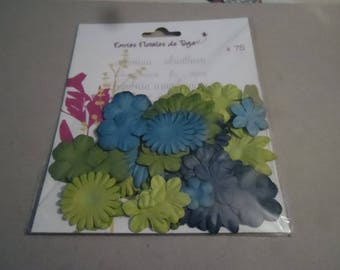 x 75 Toga paper flowers of colors Blue and green in different sizes