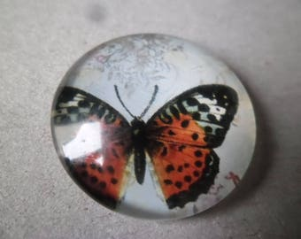 x 1 cameo/cabochon round glass dome vintage 25 mm Butterfly pattern