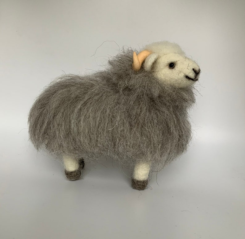 Henry the Herdwick Sheep