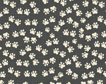 Kids fabric Cool Cats - American organic cotton - Windham Fabrics designer Carolyn Gavin footprints grey anthracite