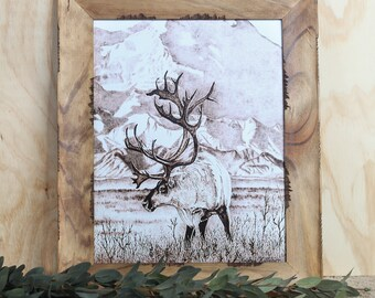 "Caribou Bull 11x14"" Print"