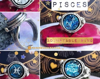 Silver Pisces Ring - Adjustable Fit with Hand Painted Constellation Design