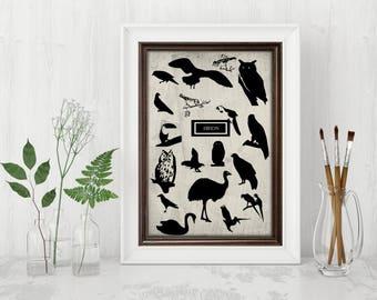 wall Decor stickers silhouette birds print