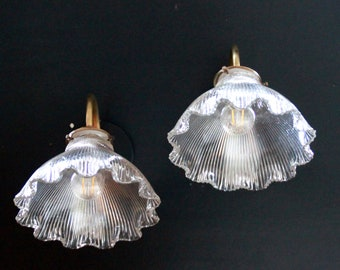 Pair wall lamp swan neck brass lampshade prismatic glass type holophane vintage old decoration