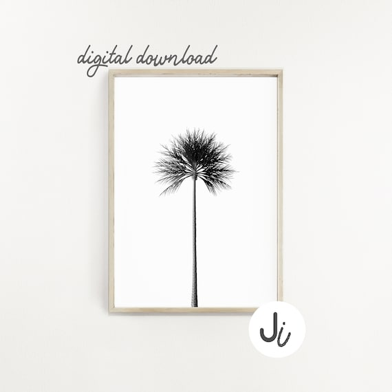 image about Palm Tree Printable called Palm Tree Printable, Printable Wall Artwork, Black And White, Vector Artwork, Tropical Decor, Innovative Minimalist, Beach front Decor, Minimalist Prints,