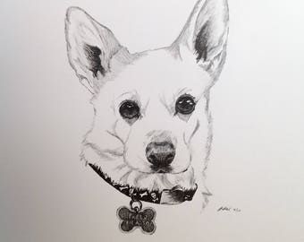 Custom Pet Portrait, original drawing - ink on Bristol paper, made to order