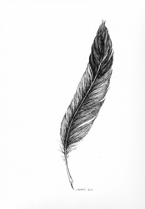 Hand Drawn Eagle Feather Ink On Bristol Paper Made To Order