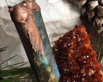 Cicada, Labradorite point with Geode