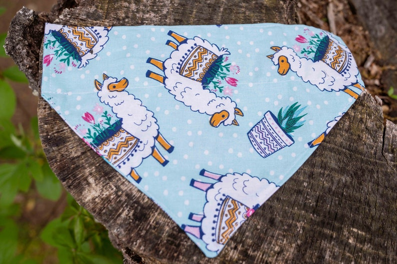 5. Blue Llama bandana