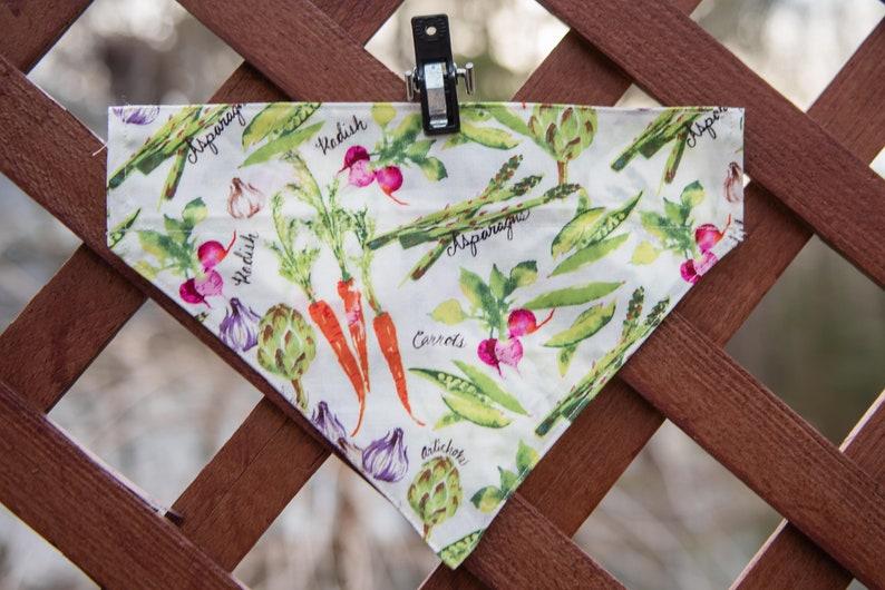 Spring Bandana Cat Bandana Vegetable Print Cat Bandana Vegetable Print Bandana Vegetable Bandana Colorful Vegetable Print Dog Bandana