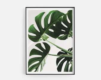 Monstera Abstract Leaf Print