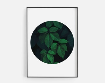 Abstract Deep Green Leaf Circle Exotic Plant Tropical Gallery Wall Art Giclée Poster Print Minimal Kitchen Living Bedroom Home Decor Pictur
