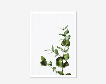 Elegant Side Abstract Leaf Exotic Green Plant Tropical Gallery Wall Art Giclée Poster Print Minimal Kitchen Living Bedroom Home Decor Pictur