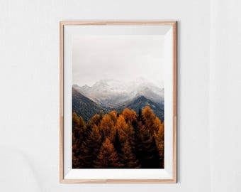 Forest print, Forest wall art, Mountain wall art, Trees photography, Mountain print, Nature wall art, Nature photography, Large print