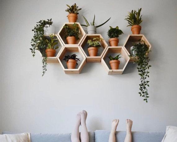 Conjunto De 6 Estantes Hexagonales Profundos Medianos De | Etsy - Diy Home Decor