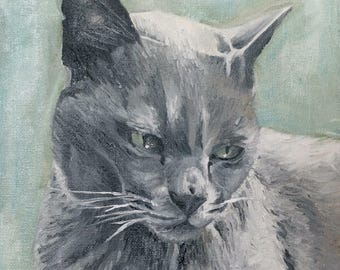 A4 PRINT Cat Portrait