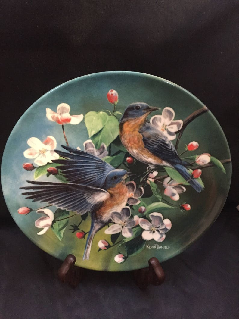 The Bluebird by Kevin Daniel from the Encyclopedia Britannica Birds of your  Garden Collection