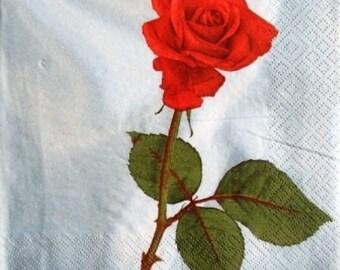 TOWEL in paper beautiful red rose #F047