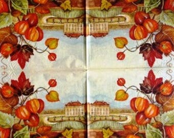TOWEL in paper Physalis and lovely #DI043