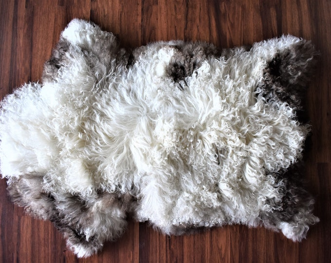"Virus Resistant Eco Friendly Imported Sheepskin Rug, White Brown Long Wool 2'1""x3'3"""